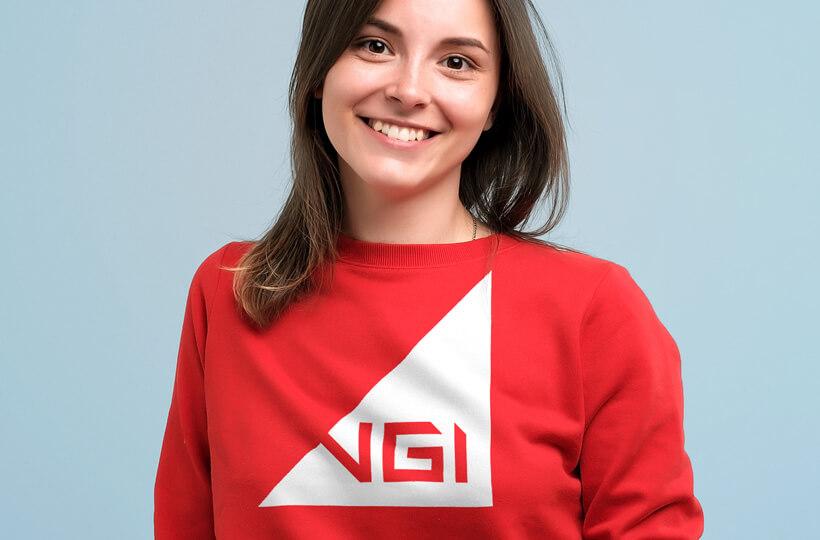 Холдинг VGI <br></noscript><img class=
